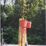 bosje asperges A'damse bos 2003